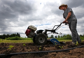 by: Jaime Valdez Dan Bravin, project manager for Multnomah County's two-acre farm in Troutdale, prepares the ground with a tiller to plant chili peppers.