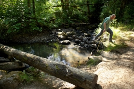 by: Jaime Valdez Rick Williams steps over rocks along Johnson Creek, which flows through Lowami Hart Woods Park.