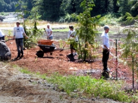 by: Jim Hart Near the Sandy River, Project Payback participants are seen creating a day-use area on BLM property.