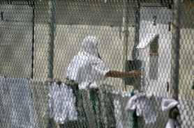 by: Randall Mikkelsen-Pool 