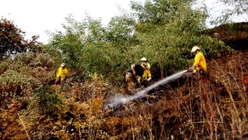 by: Courtesy of PFR Portland firefighters extinguished a wild fire on a bluff near North Willamette Boulevard Sunday afternoon. The fire was started by a child playing with matches.