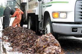 by:  Piles of autumn leaves are no match for the mobile vacuum Forest Grove maintenance workers use to make short work of the yearly nuisance.