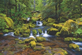 by: Contributed photo Award-winning nature photographer Nancy J. Smith took this photo of Watson Creek in southern Oregon.