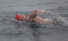 by: submitted photo Lake Oswego resident Bob Needham focuses on his strokes while swimming the 21 miles from Catalina Island to the Southern California mainland.
