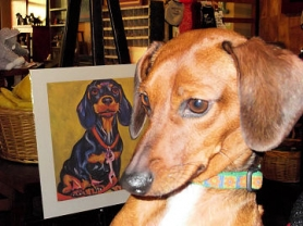 by: Mary E. Campbell Buddy, a rescued dachshund, is cuddled at Bowser Boutique.