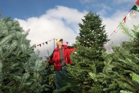 by: Jim Clark Jim Wambaugh of Oxbow Rim Tree Farm says medium-density noble fir Christmas trees are the best choice because they allow decorative ornaments to hang properly.