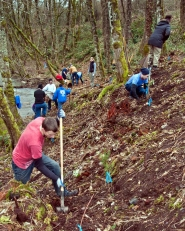 "by: BRIAN PASKO Volunteers pull weeds and plant native species near the North Fork of Deep Creek in Boring last February during the third annual ""Valentine for the Clackamas"" event in Boring. On Feb. 11, the fourth annual event will begin at 9 a.m."