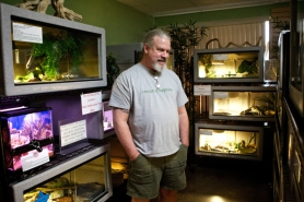 by: Jaime Valdez Owner Tim Criswell stands in the Venomous Reptile Museum at the House of Reptiles pet store in Tigard.