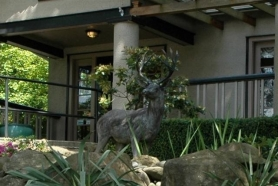 by: Submitted photo Have you seen this deer statue? It was stolen over the weekend from in front of the Raleigh Hills Dental Clinic.