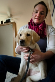 by: Nick Fochtman Paige Lee and her family are raising their sixth puppy for Guide Dogs for the Blind. Delia is in training to one day be paired with a blind or visually impaired companion.