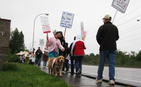 by: STEVEN BROWN, Teachers from the Reynolds School District walk the picket line this morning at Woodland Elementary School, 21607 N.E. Glisan St , Fairview. The teachers went on strike at 6 a.m. today.