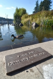 by: Vern Uyetake, A city sign indicates the public shouldn't use steps at Millennium Plaza Park to enter Oswego Lake. In response to recent criticism about the lake's private status, Lake Corp. members have pointed out they pay big premiums to keep the lake's water safe and clean while supporting city services with tax revenue from their high property values.