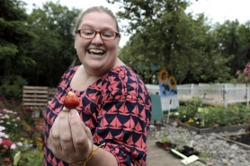 by: Jaime Valdez, Mia Bartlett plucks a fresh strawberry from the Supa Fresh garden in Tigard. The student farmers will give tutorials on growing backyard produce this Saturday at the garden tour, which supports the Foundation for Tigard-Tualatin Schools.