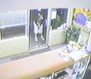 by: COURTESY PHOTO: JOYCE HIATT - A security tape shows a woman bending down and reaching into a flower pot outside Forest Fresh Cleaners, where the owner found four Lobelia plants missing the Monday after Mothers Day -- two from each pot. Anyone with information on this woman or on other flower thefts should call police at 503-992-3260 or (after hours) 503-629-0111.