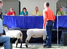 Photo Credit: PAMPLIN MEDIA GROUP PHOTO: JON HOUSE - Even four-legged constituents got a chance to be heard when Clackamas County commissioners held their business meeting last week at the Clackamas County Fairgrounds.