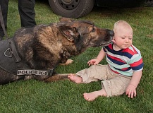Photo Credit: REVIEW PHOTOS: JOSH KULLA - For 14-month-old Dylan Ottaway of Portland, Public Safety Day included a personal greeting from LOPD K-9 Officer Charger.