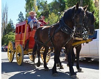 Photo Credit: CONTRIBUTED PHOTO - A stage coach graced a recent Painted Hills Festival parade.