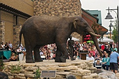 Photo Credit: TIMES PHOTO: JAIME VALDEZ - A mastodon sculpture was unveiled during Cabela's invitation-only, pre-grand opening at Nyberg Rivers.