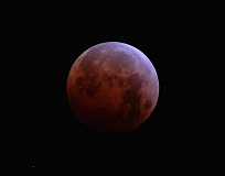 Photo Credit: SUBMITTED PHOTO: MATT SCHUSTER - A blood moon underwent a lunar eclipse in today's early-morning hours.