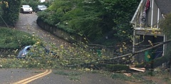 Photo Credit: COURTEST KOIN 6 NEWS/LAURA FENN - This tree knocked down power lines on Southwest Vista in Portland on Saturday.