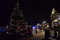 Photo Credit: REVIEW FILE PHOTO: VERN UYETAKE - Millennium Park Plaza was all aglow after the 2013 lighting of the holiday tree in Lake Oswego. This years festivities are scheduled for Friday, Nov. 28.