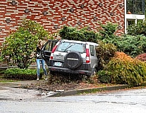 Photo Credit: ERIC NORBERG - Landscaping Crash