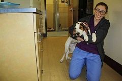 Photo Credit: POST PHOTO: KYLIE WRAY - Michelle DeCourcey tries to cheer up Winnie, a sleepy patient, during her recovery.