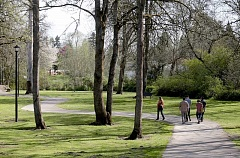 Photo Credit: FILE PHOTO - The city of Tigard is planning a series of community walks, starting Jan. 1 in Cook Park.