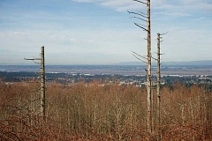 Photo Credit: OUTLOOK PHOTO: TROY WAYRYNEN - City officials are proposing a new overlay district to preserve the Gresham Butte landscape.