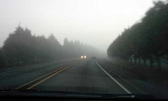 Photo Credit: NEWS-TIMES PHOTO: JILL REHKOPF SMITH - On roads to and from the Verboort roundabouts, the fog approached pea-soup consistency around 4:30 p.m. Sunday while the rest of the metro area enjoyed sun and blue sky.