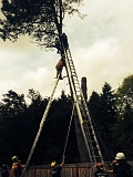 COURTESY OF PF&R - Portland firefighters used long ladders and a high-angle rope system to pull an injured tree trimmer from about 40 feet up a tree in Southwest Portland.