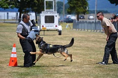 NEWS-TIMES PHOTOS: KATHY FULLER - Washington County Sheriffs Deputy Joe Yazzolino, left, defends an attack from K9 officer Taz as his handler, Deputy Don Maller looks on.