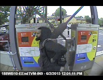 COURTESY OF GRESHAM POLICE DEPARTMENT - Police are looking for this man, a suspect in multiple armed robberies