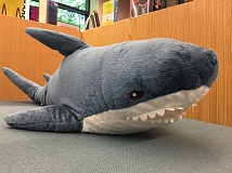 SUBMITTED PHOTO - You could win this stuffed shark by reaching your Summer Reading Challenge. Learn more at the West Linn Public Library.