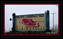 COURTESY OF CINDY WESTFALL - Sleighbells reopens Friday and will stay open through the holidays. The store is located off of Chapman Road.
