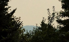 TRIBUNE PHOTO: KEVIN HARDEN - Smoky haze gave Saturday morning's sunrise an orange hue, and obscured hills in Southwest Portland. The smoke from wildfires in Eastern Oregon and Washington is expected to stick around the region until late Sunday or Monday.