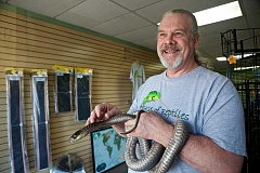 TIMES PHOTO: JAIME VALDEZ - House of Reptiles owner Tim Criswell holds one of the few retiles left, a de-venomed snouted cobra named Beaker, at his pet shop, which closes its doors for good this Sunday.