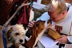PHOTO COURTESY OF KERRY MCQUAID - The Rev. Daniel Morrow, rector of St. Paul's Episcopal Church in Oregon City, blesses two well-behaved dogs during last year's Blessing of the Animals.