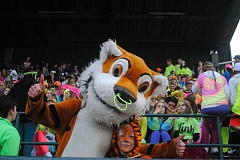 PHOTO BY TIGARD ARMY - The Tiger, decked out in neon, and Eli Chesler, in orange and black tiger makeup, cheer on the Tigard High School football team during Fridays Homecoming game.