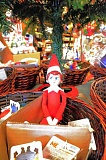 SPOTLIGHT PHOTO: NICOLE THILL - A sneaky elf hides underneath a Christmas tree at Bertucci's Chocolate Shop, one local business that is participating in the 'Elf on the Shelf' scavenger hunt this year. To find out more about the hunt, visit the South Columbia County Chamber of Commerce on Small Business Saturday, Nov. 28.