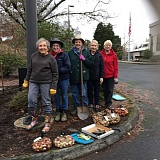 PHOTO BY PEGGY TREES - From left, Carolyn McCormick, Lynn Stevens, Peggy Schiller, Gayle Allen and Gay Fantz take a break from planting hundreds of bulbs outside the Tigard Senior Center last week. The group is planning to plant more than 1,500 bulbs across Tigard over the next few weeks.