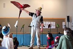 TIMES PHOTO: JAIME VALDEZ - Zeus, a green-winged macaw, perches on Karl Anderson's hand and displays his wingspan in what Anderson called his 'impression of an eagle.'