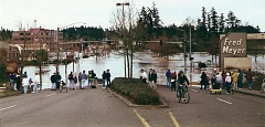 FILE - Downtown Tualatin was swamped in February 1996 by high water as the Tualatin River crested to record levels.