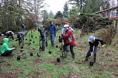 SUBMITTED PHOTO - Volunteers plant trees at last year's Watershed Wide Event; registration for this year's event, held on March 12 at Pendarvis Farm in Happy Valley, is still open.