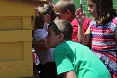 JASON CHANEY/CENTRAL OREGONIAN - Crooked River Elementary third-graders peer into a honeybee hive at Sarah and Eric Klann's local farm. The couple are beekeepers and recently invited the students to their farm to learn more about the honeybees.