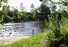 CITY OF CANBY - The Molalla River has a popular swimming hole at Canby Community Park
