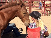 SUBMITTED PHOTO - 'Stella,' a foal from Warm Springs, gets to know trainer Anna Twinney at a clinic in Sisters.