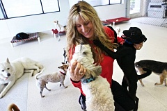 TIMES PHOTO: JAIME VALDEZ - Nancy Truax, community relations director for Oregon Dog Rescue, visits with Clark, left, a Lhasa Apso mix, and Tina, a dog from Mexico, at the no-kill animal shelter in Tualatin.