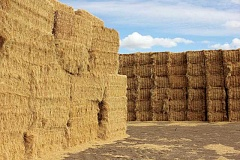 SUSAN MATHENY - Two huge stacks of large bale hay sit at the intersection of Boise Drive and U.S. Highway 26. The hay market has been volatile this year.