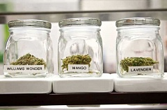 PMG FILE PHOTO - The hours for retail sales of marijuana in Tigard could be extended starting next month.